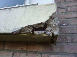 P1000258_Afgebrokkeld-beton-en-aangetaste-wapening_klein-1