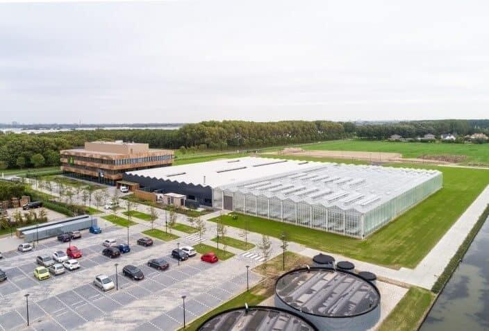 Seed-Quality-Center-van-groenteveredelingsbedrijf-De-Rijk-Zwaan-3